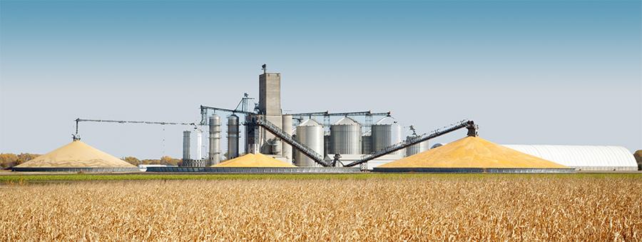 Extron Grain Management System Corn Grain Ground Pile