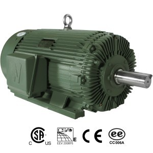 Worldwide Electric Motors  Rock Crusher Motor