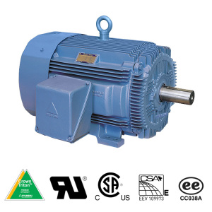 Hyundai crown triton general purpose tefc motor crown High efficiency motors