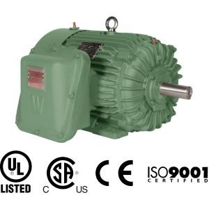 Worldwide explosion proof rigid base motor worldwide low for World wide electric motors