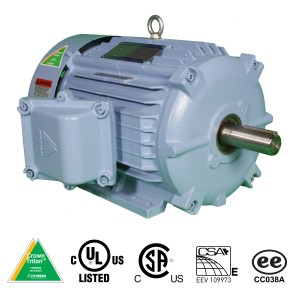 Hyundai Crown Triton  Motors - Explosion Proof Motor