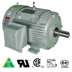 Severe Duty Low Voltage Motor IEEE-841