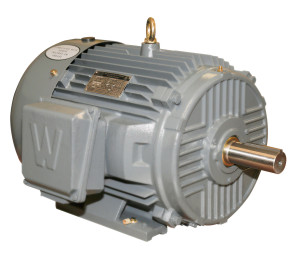 Worldwide Epic Plus Severe Duty Rigid Base Motor